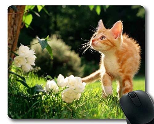 Mäusematte, Kätzchen-Tierkatzenblumengarten-Grasmausunterlage, Mäusematte für Computer cat136