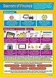 Fuentes de financiación Póster  educational Business gráfico para estudiantes y profesores, alta calidad brillante papel de 850mm x 594mm (A1) fácil aprendizaje con colorido imágenes para la clase o en casa, por Daydream Educación, color Gloss Paper