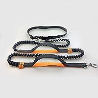 ZQ@QXCorrer perro tracción cuerda doble reflexivo cordón elástico tracción, naranja