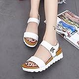MRULIC Mädchen Sommer Sandalen Schule Schuhe Im Alter Von Flach Mode Sandalen Komfortable Schnalle PU 3-5 cm Mittlere Ferse Schuhe