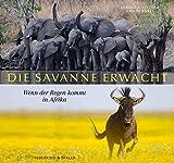 Die Savanne erwacht - Faszinierender Bildband