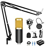 QING.MUSIC Microphone system Kit Microfono a condensatore con Alimentatore Phantom USB 48V, Supporto per Braccio a Sospensione, Supporto Anti-Shock, Trasmissione da Studio Home Recording