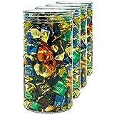 D' Luxy Pack 4 Botes de Polietileno Alimentario, 1,5 L (20x10 cm). Tarros con Tapa Transparente de...