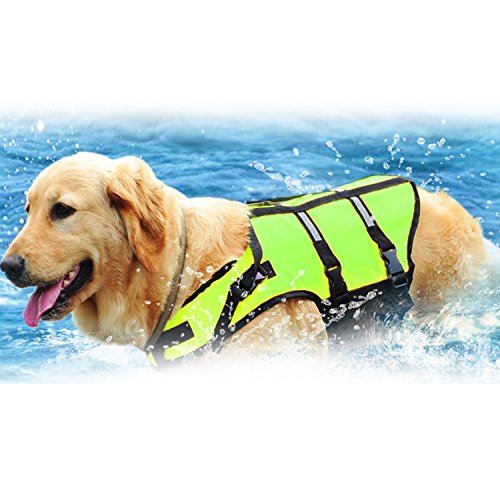 Warrah Reflektierende Pet Dog Life Jacket erhöhen die Sichtbarkeit Easy-Fit verstellbare Dog Life Weste Preserver Hohe Hilfe Auftrieb Pet Safe Dog Life Preserver Hund Lifesaver Weste Schwimmweste Coat Float Life Jacke Grün, L