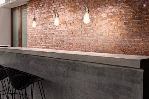 SEBSON Hängelampe ohne Schirm, Lampenfassung mit Textilkabel, inkl. E27 LED Edison Lampe 4W 2300K, 150cm lang, rot - 5