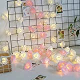 A2Z, Romantic Pink & WarmWhite Roses Led Fairy String Lights For Diwali Festival Home Decoration, (5M Pink + 5M WarmWhite)