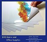 10 láminas autoadhesivas satinadas de vinilo (PVC), A4, aptas para impresoras láser, resistentes al agua, de alta calidad, color blanco. FBA