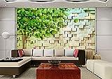 FSKJBZ Taille Personnalisée Photo Salon Canapé Tv Fond Murale Papier Peint 3D Moderne Minimaliste Salon Salon Papier Peint-250Cmx175Cm @ 200cmx140cm