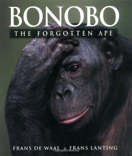 Bonobo: The Forgotten Ape