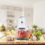 POSAME Elektrisch Universalzerkleinerer, Multi-Zerkleinerer, schneider, Fleischwolf, Küchenhelfer für Obst und Gemüse mit 2 Edelstahl Messer (Standard 304, Lebensmittelqualität) und 1L Glasbehälter Vergleich