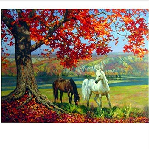 WAZHCY Acrylfarbe Malen nach Zahlen Für Erwachsene Ahorn Rot Weiß Und Braun Pferd Tier DIY Wohnkultur Mit Pinsel-Rahmen 40X50 cm -