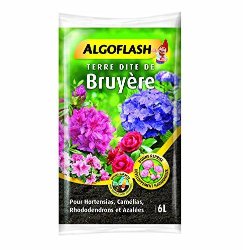 ALGOFLASH Terre de Bruyère 6L Terre Dîte de Bruyère 6 L, Rose, 24 x 5 x 35 cm