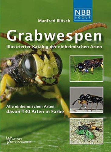 Grabwespen: Illustrierter Katalog der einheimischen Arten (NBB Scout)