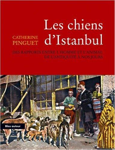 Les chiens d'Istanbul : Des rapports entre l'homme et l'animal de l'Antiquitit  nos jours de Catherine Pinguet,Jean-Michel Belorgey (Prface) ( 17 avril 2008 )