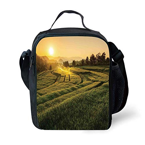 MLNHY School Supplies Farm House Decor,Barley Field Sunset at Samoeng Chiang Mai Thailand Asian Nature Countryside Picture,Green Yellow for Girls or Boys Washable - Prep-farm