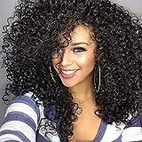 Ankamal Elec Afro Verworrene Lockige Perücke Synthetische Perücke Lockiges Haar Cosplay Perücken Echthaar Perücken für Schwarze Frauen Natur Schwarz 16 Zoll
