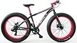 FREJUS - Bicicleta Fat-Bike 26 Acero