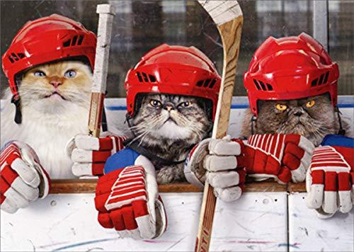 Geburtstagskarte mit Hockey-Katzen-Motiv Avanti