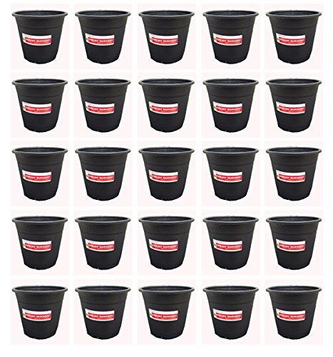 "Chhajed Garden'S Sunrise 14.5 Cm Gardening Plant Container (Black Nursery Plastic Pot 6"") (Pack Of 25)"