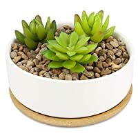 Ceramic Plant Pot & Bamboo Base | Indoor & Outdoor Succulent Planter | Cactus & Small House Plant White Pots | M&W (Round)