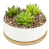 Pot à plantes en céramique et base en bambou | Jardinière succulente d'intérieur et d'extérieur | Pots blancs de cactus et de petites plantes d'intérieur | M&W (Rond)