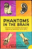 Phantoms in the Brain: Human Nature and the Architecture of the Mind price comparison at Flipkart, Amazon, Crossword, Uread, Bookadda, Landmark, Homeshop18