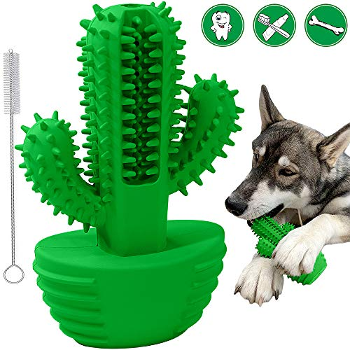 Hunde Zahnbürste Stick, Puppy Dental Care Hundezahnbürste Bürsten Kauen Quietschendes Spielzeug Hund Zahnreinigung Massagegerät Ungiftig Naturkautschuk Bissfest (Passt 20-45 Pfund Small Medium Dogs)