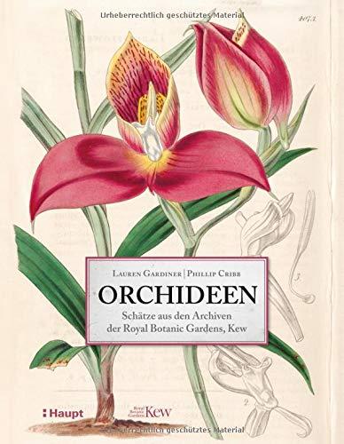 Orchideen: Schätze aus den Archiven der Royal Botanic Gardens, Kew