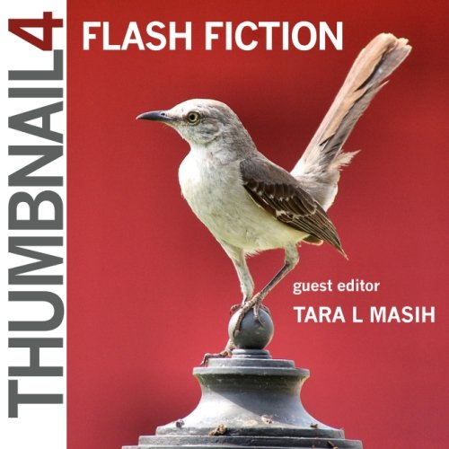 thumbnail-4-flash-fiction-volume-1-thumbnail-magazine-a-flash-fiction-journal