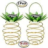 Solar Lampe Ananas Garten Lichter Wasserdicht Dekoration Nachtlicht für Pfad Outdoor Warm Hängende Lichterketten für Veranda (2 Pack)