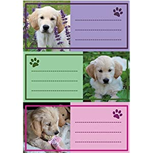 Herma 5529 Name Labels for School Stapler, Dog Motif 7 x 6 x 3, 5 cm/Capacity: 9 Labels