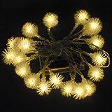 JnDee Warm weißen Blüten Ball batteriebetrieben LED Lichterkette 2m 20LED–On/Off/Flash Funktionen, perfekt für Weihnachten Hochzeit und Parteien