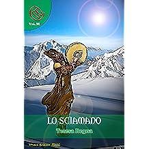 Lo Sciamano (Wizards & Blackholes)