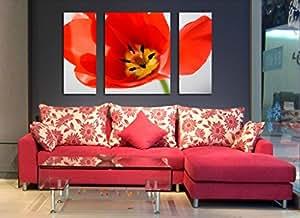 Bernice-Toile Art, 3p Art Deco Peinture moderne d'art abstrait mur sur la toile avec des coquelicots, fleurs peinture,pas encadree