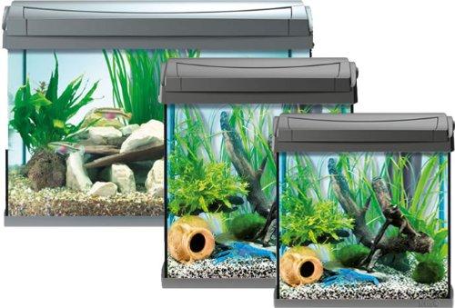 Tetra-AquaArt-Discovery-Line-LED-Aquarium-Komplett-Set-anthrazit-inklusive-LED-Beleuchtung-Tag-und-Nachtlichtschaltung-und-EasyCrystal-Innenfilter-ideal-fr-Krebse-und-Garnelen