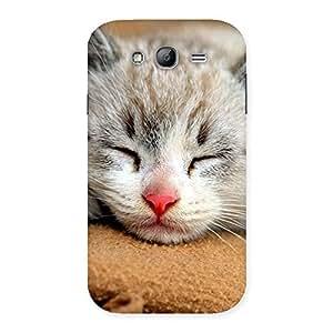 Cute Premium Cute Sleepings Cat Multicolor Back Case Cover for Galaxy Grand