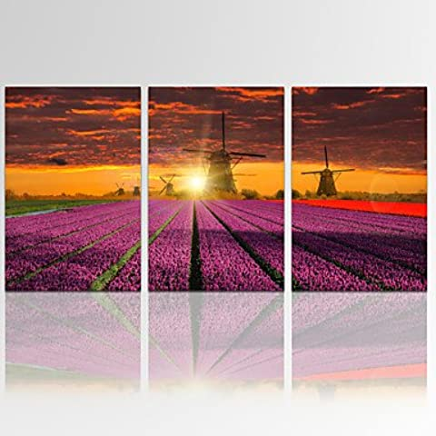 ZSQ Giardino Lavanda Sunrise Wall Art per Home Decor paesaggio digitale Stampa su tela pronto ad appendere #3714