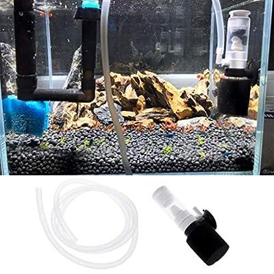 Mini pompe à air biochimique pour aquarium, filtre à oxygène, écumeur, produits pour aquarium.