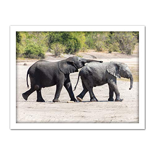 Delso Baby African Bush Elephants Botswana Animal Photo Artwork Framed Wall Art Print 18X24 Inch afrikanisch Elefant Tier Fotografieren Wand - Fine-art-tier-artwork
