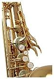 00038242 Classic cantabile saxophone soprano en si bémol winds sS - 450 (laiton klarlackiert hoch-fis-clés, ergonomiques clétage)