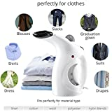 Drake Garment Steam Iron Cloth Smell Remover Facial Steamer