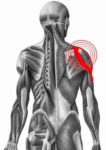 TapeMED Kinesiologie Schulter-Tape-Set , Deltamuskel, Schultergelenk, 2 Anwendungen, Precut, vorgeschnitten, zugeschnitten