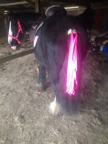 Horse and Rider Safety The Wiz Viz Tail Streamer - Original Product from Horse and Rider Safety - Be Seen, Be Safe. (Fluorescent Pink)