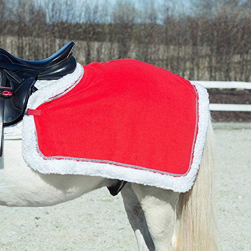 netproshop Weihnachten Pferde Ausreitdecke aus Fleece mit Glitzer Auswahl, Groesse:Full