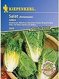 Salat Romanasalat Salatherzen Attico resistent