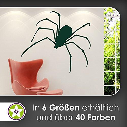 KIWISTAR Spinne - Spinnweben Vogelspinne Zecke Kanker Wandtattoo in 6 Größen - Wandaufkleber Wall Sticker