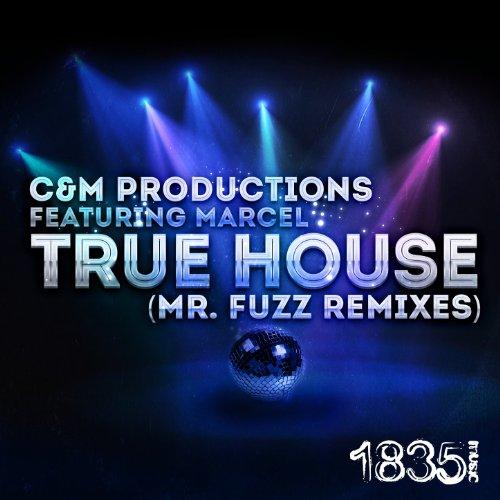 True House (Mr. Fuzz Deep Progressive Beats Mix)