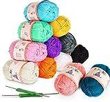 ilauke 12x50g Pelotes de Laine en Acrylique Multicolores avec 2 Crochets pour Crochet de Fil à Tricoter