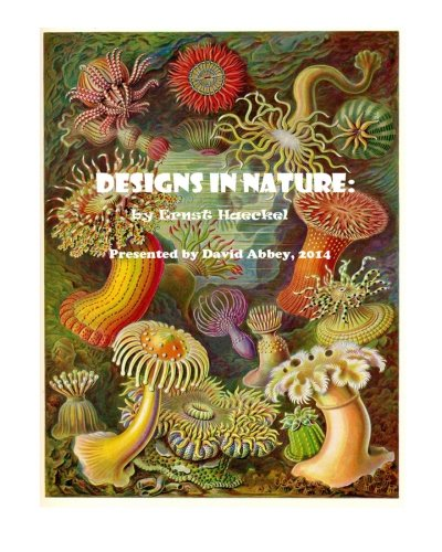 Designs in Nature: the incredible art of Ernst Haeckel por David Abbey