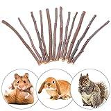 50g Holz natürliche Apfelbaum Ast Meerschweinchen Eichhörnchen Kaninchen Kauen Spielzeug